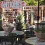 Outdoor Antiques